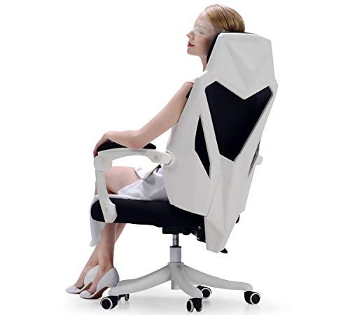 Incredible Hbada Office Computer Desk Chair Ergonomic High Back Ncnpc Chair Design For Home Ncnpcorg